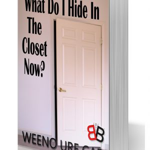 What Do I Hide In The Closet Now?